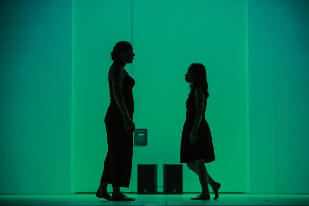 (On) The Other Side of the Skin | Agata Siebert, Aki Hashimoto